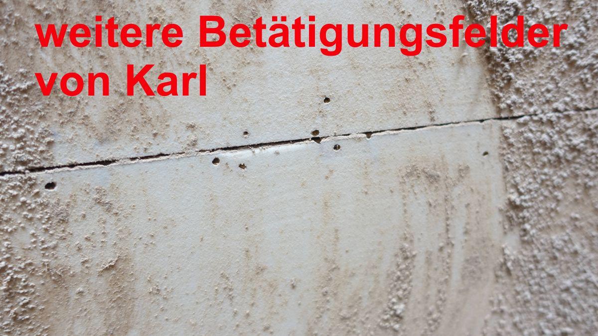 text karl der käfer